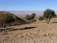 Maroc_051.JPG