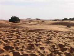 Maroc_082.JPG