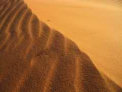 Maroc_087.JPG