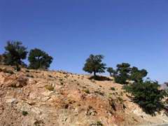 Maroc_141.JPG