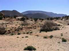 Maroc_149.JPG