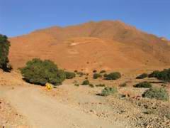 Maroc_163.JPG
