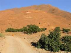 Maroc_164.JPG