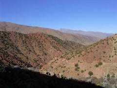 Maroc_176.JPG