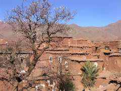 Maroc_223.JPG