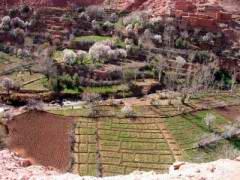 Maroc_233.JPG